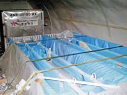 "Dolphins  in ""flying coffins"" in a Hong Kong Airline cargo hold  as they are transported to captive dolphin facilities. Photo: Hong Kong  Airlines"