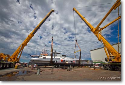 January 20, 2012: Two cranes lower the Brigitte Bardot into final position for repair work to begin.  -  photo: Simon Ager