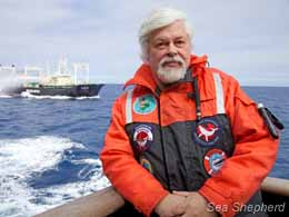Captain Paul Watson defending the whales in the Southern Ocean Whale Sanctuary, as the Japanese factory ship, Nisshin Maru, lurks nearby. Photo: Barbara Veiga